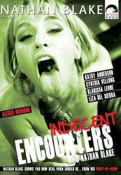 Indecent Encounters With Nathan Blake (2014) WEBRip